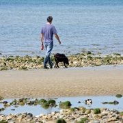 Man walking his dog on a beach